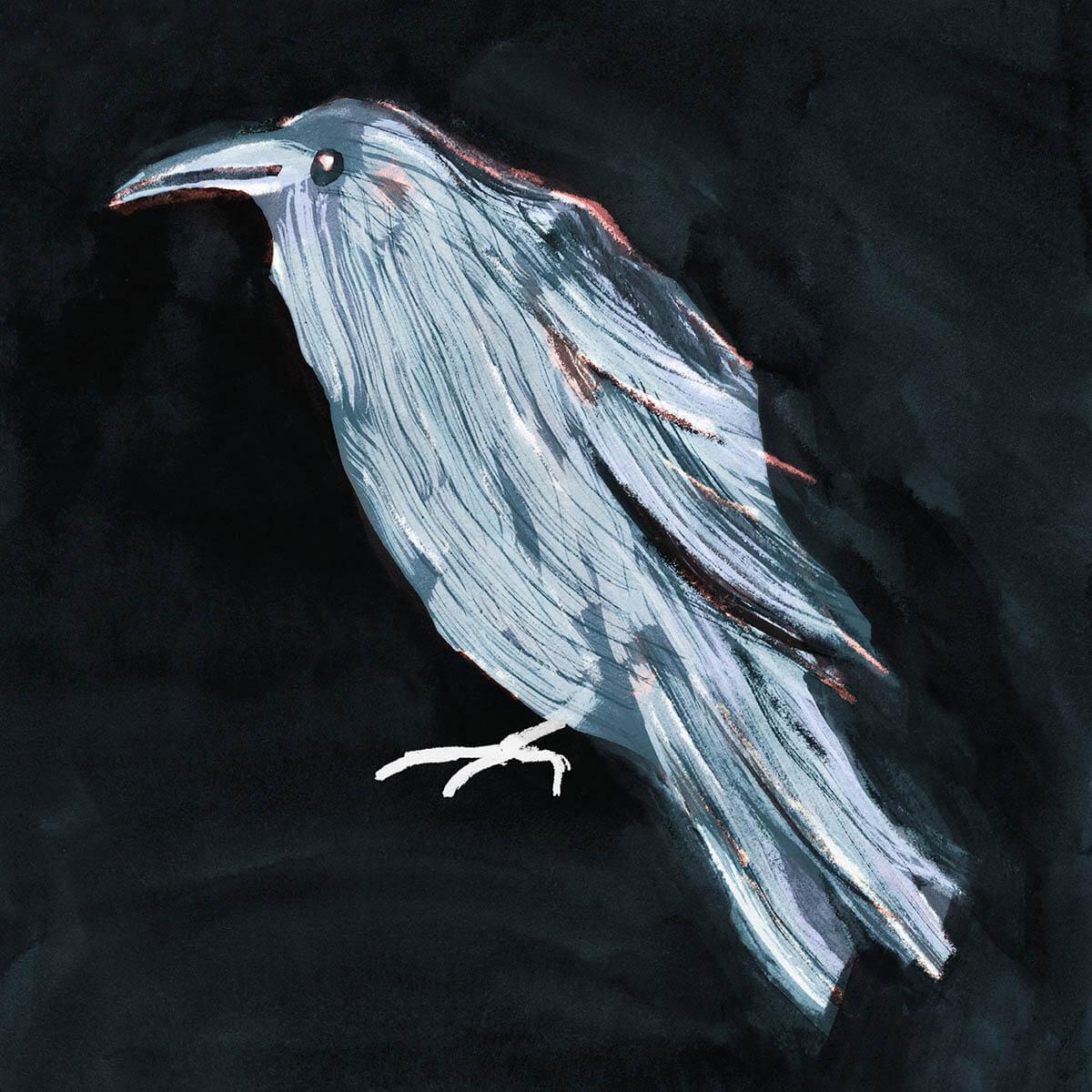 Corvus Corax by Pyhai